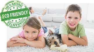 Eco-Friendly Carpet Clean Vancouver